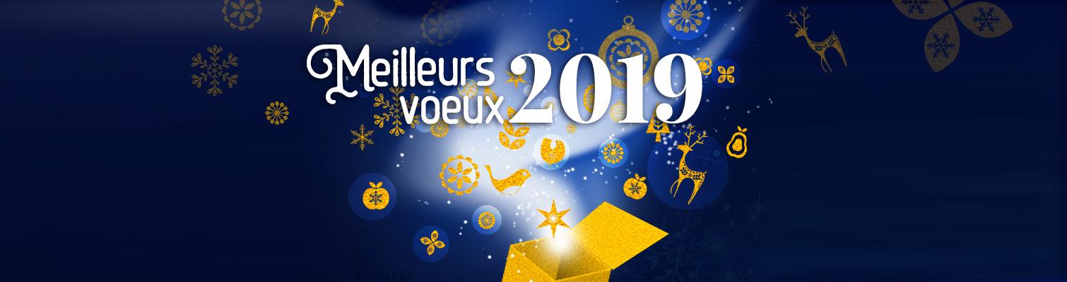 Nous vous souhaitons une très belle année 2019